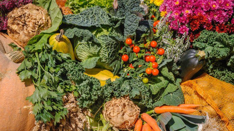 En masse forskellige grove grøntsager
