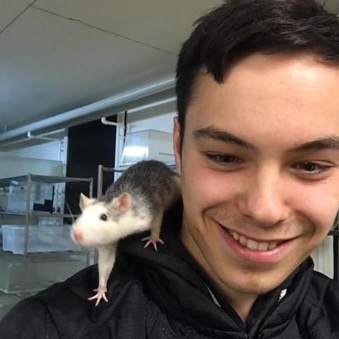 Peter har fået sit ønske opfykldt: Han skal være dyrepasser